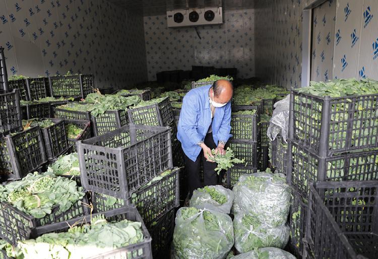 """(配汤艳娟稿件图)大足7家农业主体紧急""""(4165215)-20200214130455.jpg"""